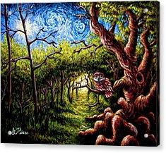 Guide Owl Acrylic Print