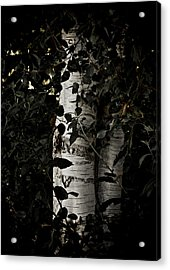 Guided By Light Acrylic Print