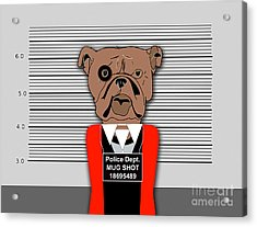 Guilty As Charged Acrylic Print