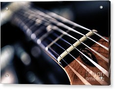 Guitar Strings Acrylic Print by Stelios Kleanthous