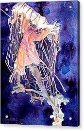 Gulf Coast Jelly Acrylic Print