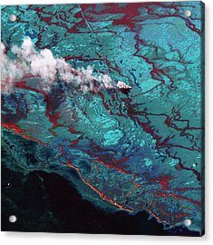 Gulf Of Mexico Oil Spill Photograph By Digital Globe