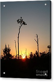 Gulf Shores Sunset Acrylic Print