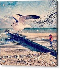 #gull #beautiful #bird #seagull #water Acrylic Print by Jill Battaglia