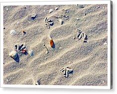 Gull Tracks Acrylic Print