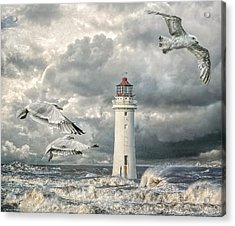 Gulls At Perch Rock Acrylic Print