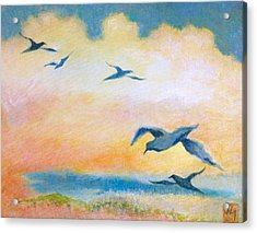 Gulls At Sunset Acrylic Print by Julia Miller