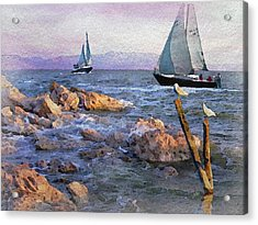 Gulls Watching The Ships Acrylic Print by Philip White