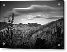 Gums Of Grey Acrylic Print by Mark Lucey