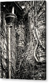 Gutter Pipe Acrylic Print by John Rizzuto