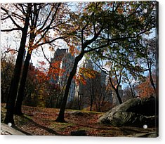 Guy On A Rock In Central Park Acrylic Print