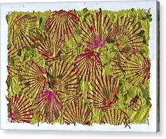 Gyotaku Scallops - Christmas Bushel - Holiday Shellfish Acrylic Print