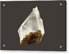 Gypsum Crystals Acrylic Print by Science Stock Photography