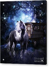 Gypsy Dreaming Acrylic Print by Shanina Conway