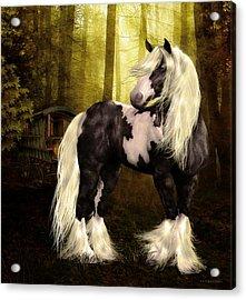 Gypsy Gold Acrylic Print by Shanina Conway