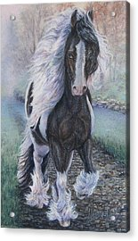 Foggy Morning Stroll Gypsy Horse  Acrylic Print