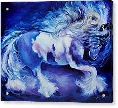 Gypsy Vanner In Blue Acrylic Print