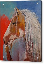 Gypsy Vanner Acrylic Print by Michael Creese