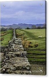 Hadrian's Wall Acrylic Print