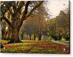 Hagley In Autumn Acrylic Print