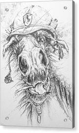 Hair-ied Horse Soilder Acrylic Print