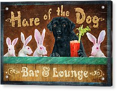 Hair Of The Dog Acrylic Print by JQ Licensing
