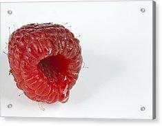 Hairy Raspberry Acrylic Print by John Crothers