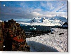 Half Moon Island Antarctica Acrylic Print