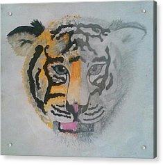 Half And Half Tiger Acrylic Print by Kendya Battle
