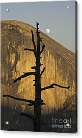 Acrylic Print featuring the photograph Half Dome With Full Moon by Judi Baker
