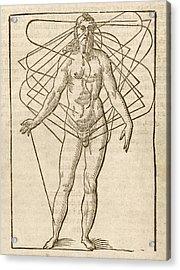 Half-man Half-woman Acrylic Print