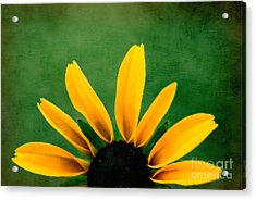 Half Sun - S02ct01 Acrylic Print by Variance Collections