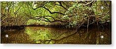 Halfway Creek At Low Tide - Everlglades Acrylic Print