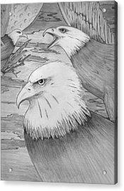 Haliaeetus Leucocephalus Named By Roger Swezey Acrylic Print by Richie Montgomery