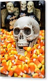 Halloween Candy Corn Acrylic Print by Edward Fielding
