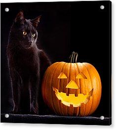 Halloween Pumpkin And Cat Acrylic Print by Dirk Ercken