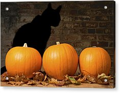 Halloween Pumpkins And The Witches Cat Acrylic Print by Amanda Elwell