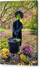 Halloween Witch Acrylic Print by Thomas Woolworth