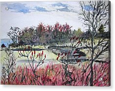 Acrylic Print featuring the painting Hamlin Ontario Plein Aire by Judy Via-Wolff