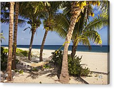 Acrylic Print featuring the photograph Hammock And Palm Trees  by Yelena Rozov