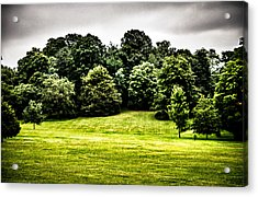 Hampstead Heath Greens Acrylic Print