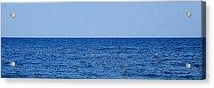 Hampton 50-50 Acrylic Print by John Wartman
