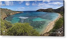 Hanauma Bay Panorama Acrylic Print by David Smith
