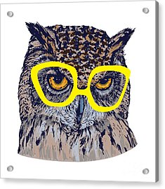Hand Drawn Owl Face With Yellow Acrylic Print