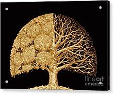 Hand Drawn Sketch Tree. Environmental Acrylic Print