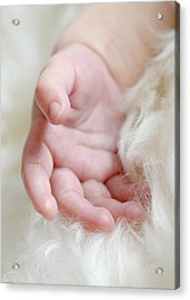 Hand Of An Angel Acrylic Print by Lisa Phillips