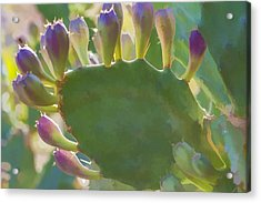 Hand Of God Acrylic Print