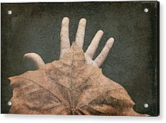 Hand Of Nature Acrylic Print