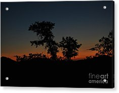 Sense Of Freedom Acrylic Print