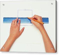 Hands Using Pencil And Ruler Acrylic Print by Dorling Kindersley/uig